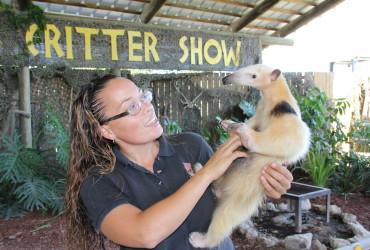 Everglades Critter Show