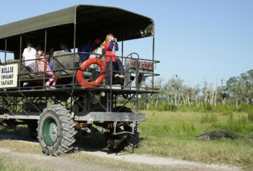 Swamp Buggy in the Florida Everglades