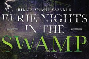 Eerie Nights in Nights Swamp