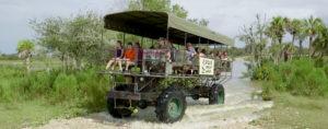 Everglades Swamp Buggy Tour